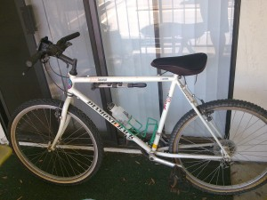 My old bike I used for the Brick workout..