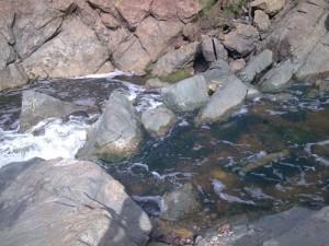 Los Peñasquitos Canyon Preserve Trail Waterfall