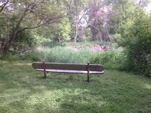 Des Moines Trail Bench