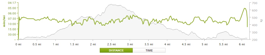 firecracker 10k elevation profile